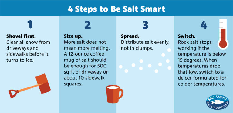 Graphic: 4 Steps to Be Salt Smart