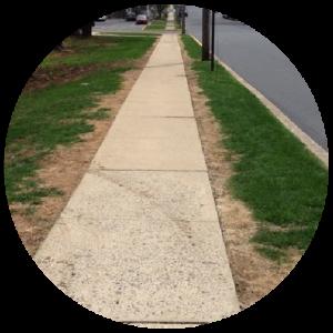 Grass with salt burns next to sidewalk