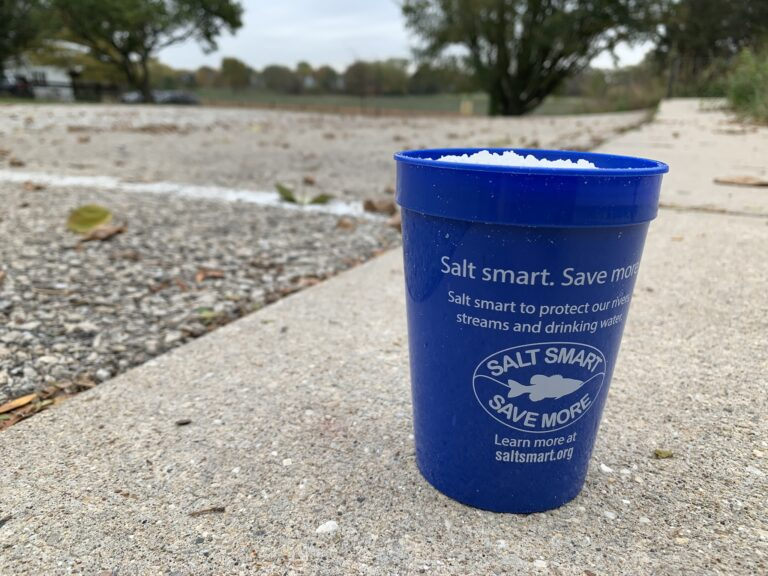 Salting cup filled with salt