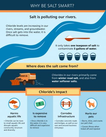 Why Be Salt Smart Graphic